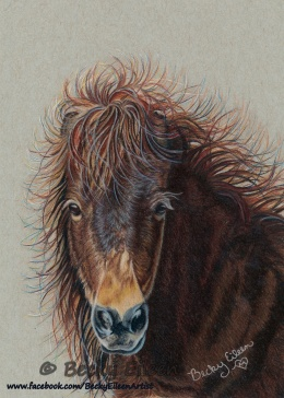 Breezys Bad Hair Day 10-21-16 CR FB