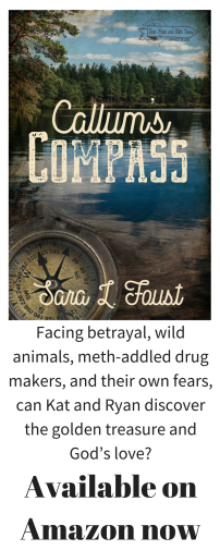 Facing betrayal, wild animals, meth-addled drug makers, and their own fears, can Kat and Ryan discover the golden treasure and God_s love_