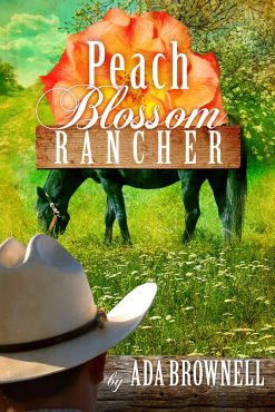 larger rancher cover 1